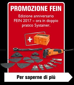 Edizione anniversario FEIN 2017